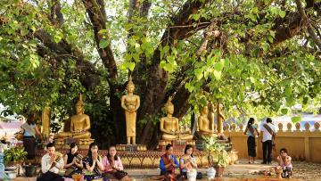 Cultures laotiennes