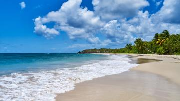 Madinina : La Martinique Authentique
