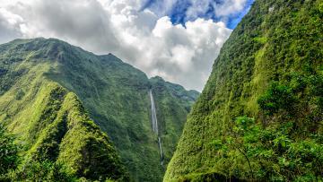 La Réunion Nature
