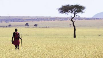 Kenya envoûtant