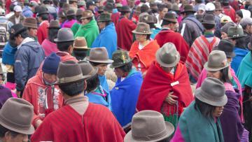 Contrastes d'Equateur