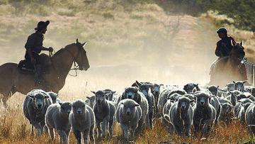 Patagonie Terre des pionniers
