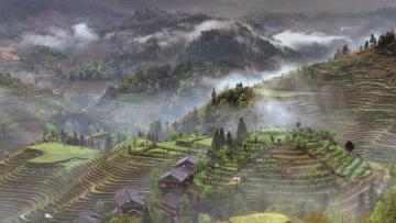 Le Reflet des rizières