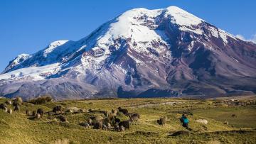 Au coeur de l'Equateur