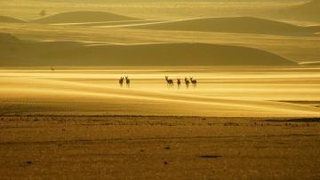 Namibie envoûtante