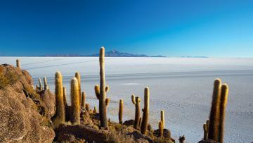 Blancheur des Andes