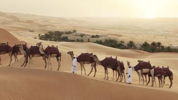 A la découverte d'Abu Dhabi
