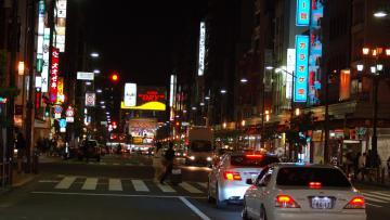 Les Paradoxes japonais