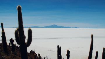 A travers les déserts de sel