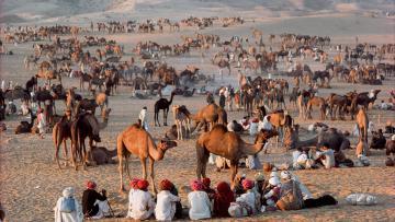 Rajasthan impérial