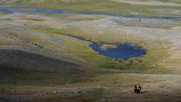 Incroyable Mongolie